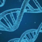 Public Talk о буллёзном эпидермолизе «Генетическое равноправие»