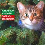 Открытая запись подкаста «Животные и Новый год: что может пойти не так?»